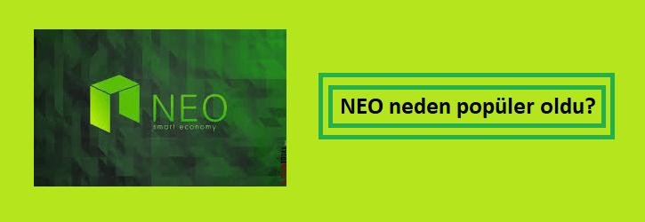 neo neden popüler oldu